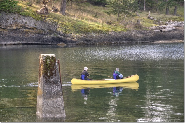 canoe,Baynes Sound,paddling,west coast perspective