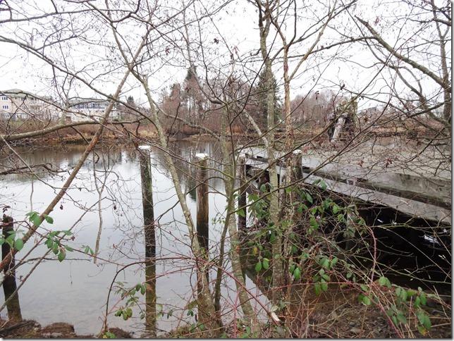 Courtenay River,still life,Field Sawmill,history,river