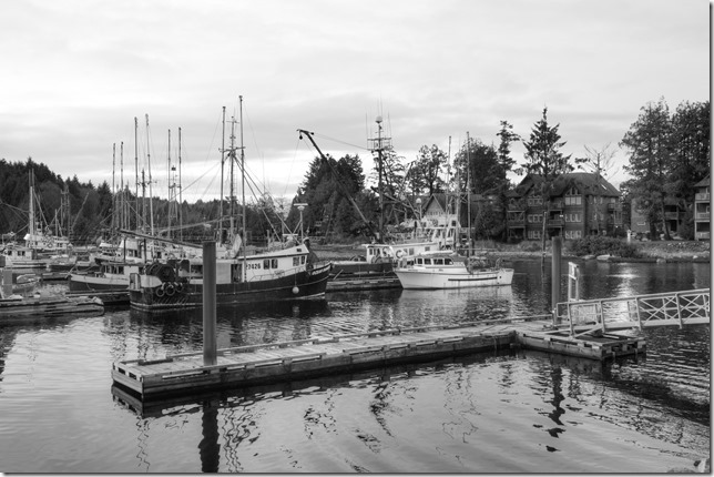 The fishing boats Ocean dancer, Deltaga, and Royal Viking in Ucluelet