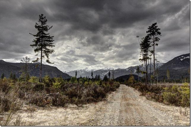 nature,outdoors,Vancouver Island,British Columbia,mountains,logging road,Comox Glacier